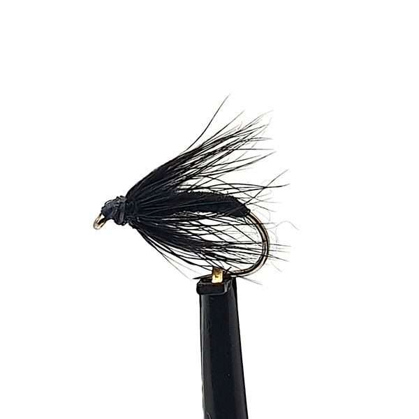 Black Spider Wet Trout Fly