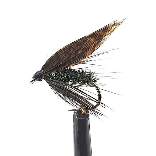 Alder Wet Trout Fly