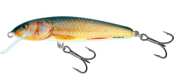 RV-M5F-RR Minnow
