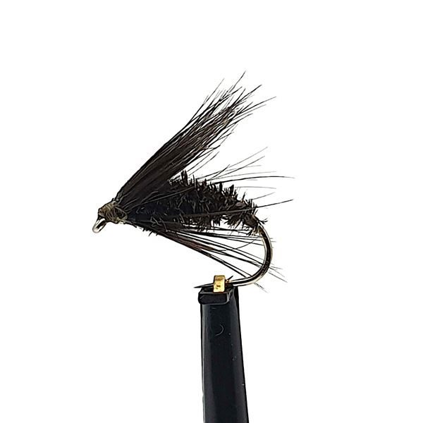 Black and Peacock Spider Wet Trout Fly